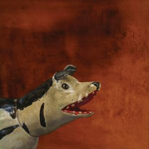 Hyena - Manuel Delgado