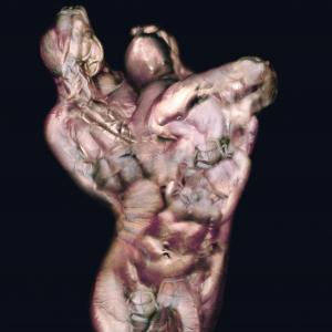 Hulk - Robert Gligorov
